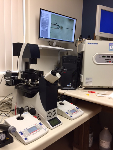New-inverted-microscope-Leica-DMI-6000-with-micromanipulators-for-ICSI-procedure